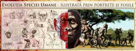 hominizi expo