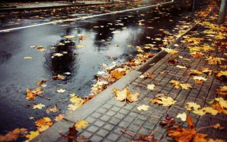 vreme ploioasa toamna