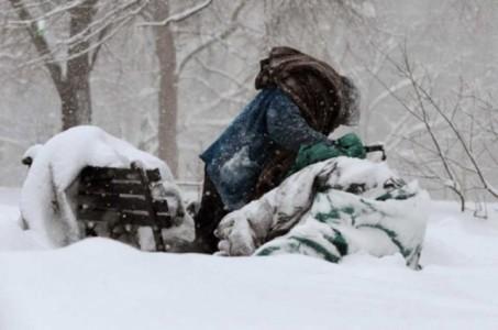 iarna fara adapost