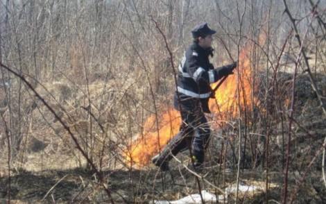 incendiu liziera