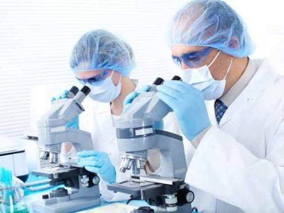 cercetatori