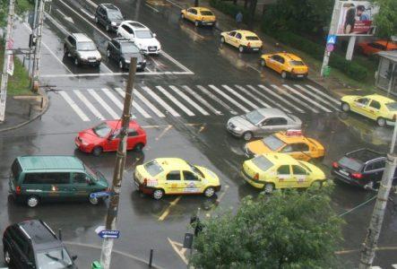 masini ploaie