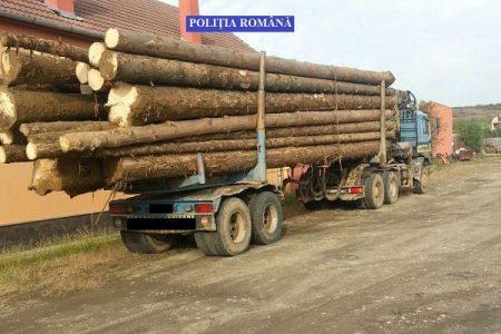 camion cu lemn