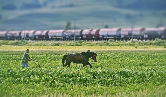 Agentia-de-Plati-si-Interventie-pentru-Agricultura-APIA