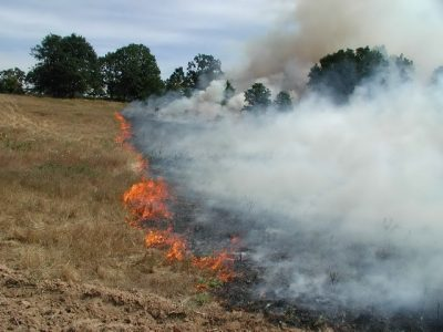 incendiu miriste_resize