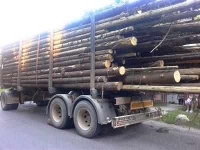 lemne-camion-05