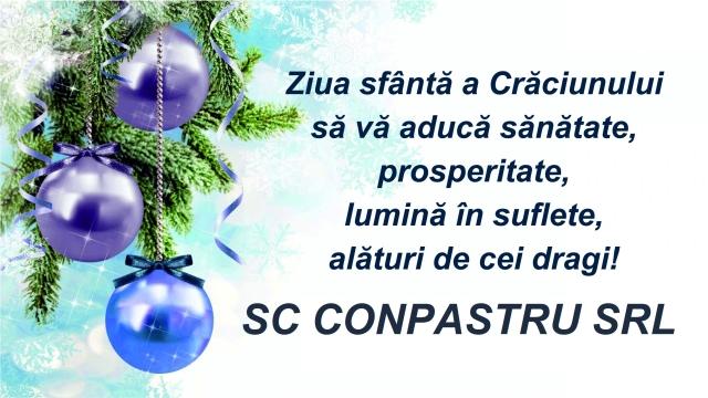 6-conpastru