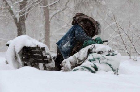 iarna-fara-adapost